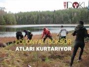 SPOR Polonyalı Boksör hayat kurtardı