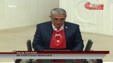 Türk bayraklı yemin