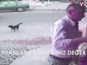 Kedi2 İnsanlık Ölmüş