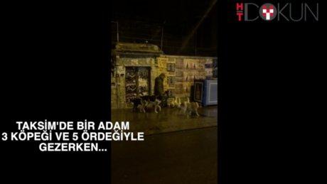 Taksim'de bir adam 3 köpeği ve 5 ördeğiyle geziyor