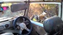 Safaride korkutucu anlar