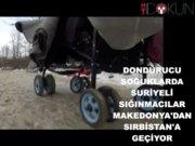 Suriyeli sığınmacılar Makedonya'dan Sırbistan'a geçiyor