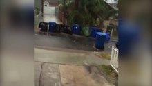Yüzen çöp kutuları