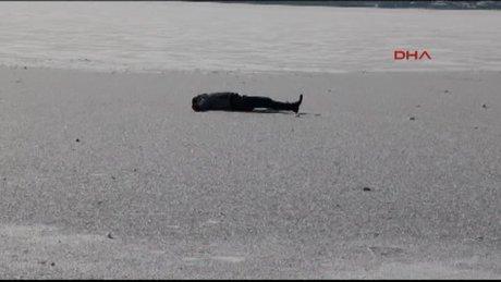 Buz tutan Mogan Gölü'nde yürürken kriz geçirip bayıldı