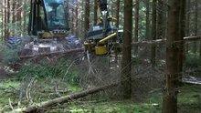 Ağaç kesme makinesi