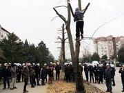 Eylem için ağaca tırmandı