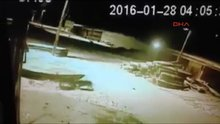 /video/haber/izle/ac-kalan-kurtlar-karsa-indi/167325