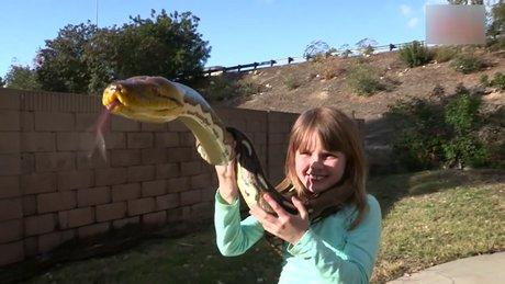 Çocukların piton yılanı ile tehlikeli oyunu