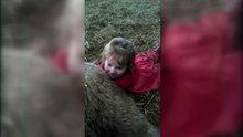 3 yaşındaki küçük kız kuzu doğurttu!