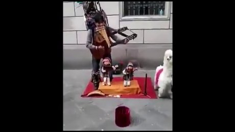 Sokakta keyifli gösteri