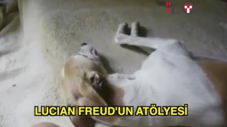 Freud'un torunu Lucian Freud'un atölyesi