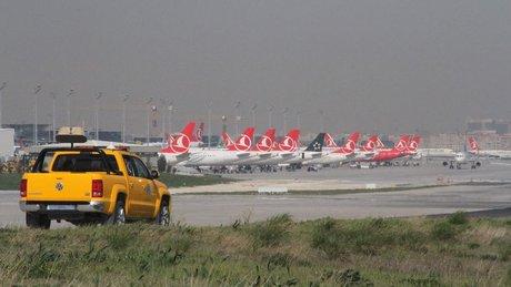 Atatürk Havalimanı'nda kuş timi