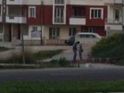 Kırşehir'de miğde bulandıran görüntü