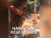 Hande'nin yavru kediyle imtihanı