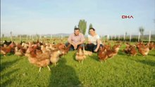 İki kardeş 3 tavukla girdiği işte markalaştı