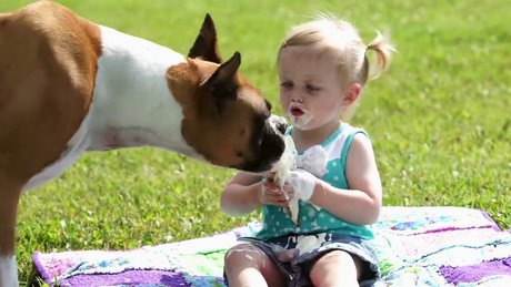 Köpekle dondurmasını paylaşan küçük kız
