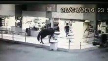 /video/haber/izle/vahsi-bati-stili-soygun--video/181574