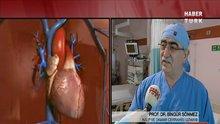 /video/saglik/izle/aort-damari-neden-yirtilir/183227