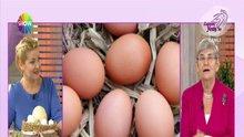 /video/saglik/izle/mavi-yumurta-olur-mu/183381