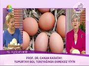 Mavi yumurta olur mu?