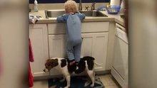 Köpeğini basamak yapan ufaklık