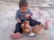 Yemeğini tavuklara kaptıran çocuğun mücadelesi