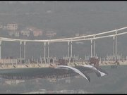 Beşiktaş bayrağı 3. köprüde