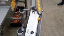 /video/ekonomi/izle/yumurta-kirma-makinesi/185472