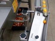 Yumurta kırma makinesi
