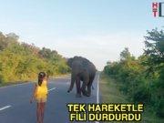 Fillere fısıldayan kız