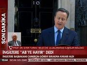 İngiltere'nin kararını İlter Turan değerlendirdi