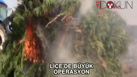 Lice'de 8.5 milyon liralık esrar ele geçirildi
