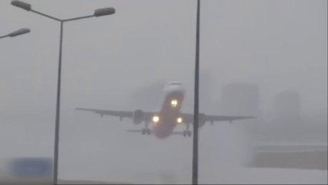 Köpek THY uçağına rötar yaptırdı