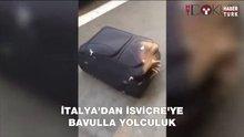 Bavuldan göçmen çıktı!