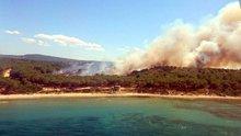 Tarihi Gelibolu Yarımadası'nda yangın
