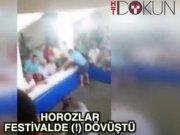 Horoz festivali'ne dövüş baskını