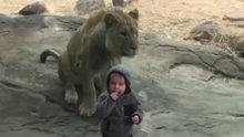 Çocukların hayvanat bahçesindeki keyifli halleri