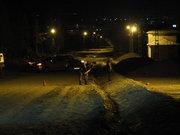 Muş'ta zırhlı polis aracına el bombalı saldırı girişimi