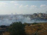 Maltepe'de orman yangını