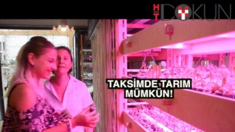 Taksim'de tarım yapıyorlar