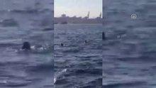 Sahil güvenlik teknesinin alabora olması sonrasında yaşananlar amatör kamerada
