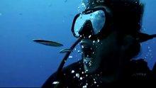 Dişlerini balıklara temizleten dalgıç