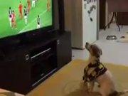 Gol sonrası köpeğin sevinci