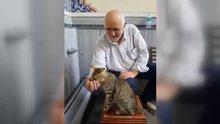 Kediye eliyle su içiren amca