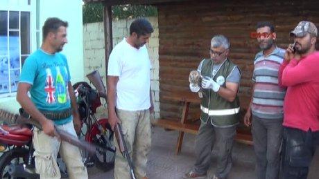Avcıların bulduğu puhu kuşu tedavi altına alandı