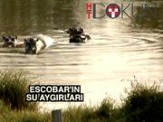 Escobar'ın su aygırları halkı tedirgin ediyor