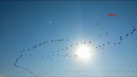 Balıkesir Göç yolundaki ışık UFO mu?