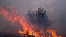 Bingöl'de yangın
