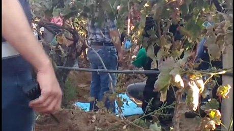 Irmak Kupal'ın cesedi bulundu