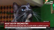 /video/haber/izle/kedilere-ozel-album/207318